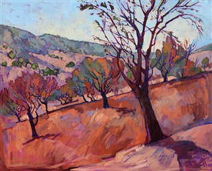 Paso Robles walnut trees landscape painting by Erin Hanson