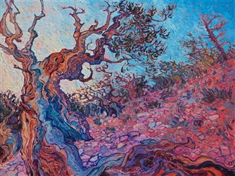 Bristlecone Pine forest oil painting by contemporary impressionist artist Erin Hanson