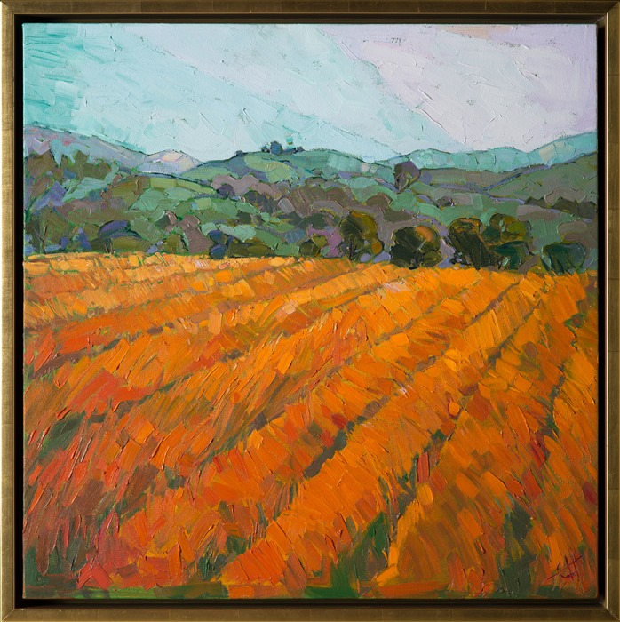 These golden plowed fields of Paso Robles are vibrant with color.