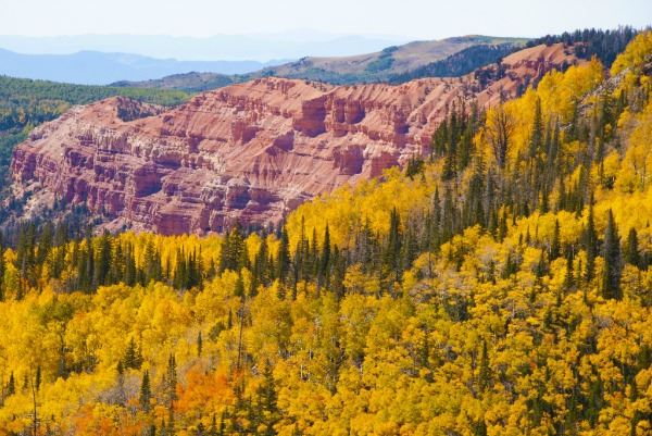 Cedar Breaks National Monument in Fall Colors